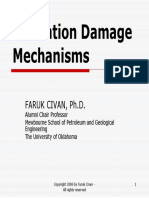 Formation Damage MechanismSkin