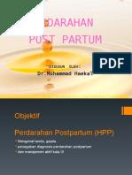 HPP Dan Shock