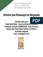 ClementeManguez.pdf