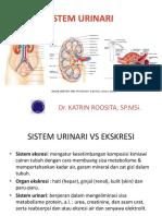 Urinary System Desember2014
