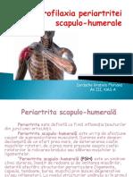 Kinetoprofilaxia Periartritei Scapulo-humerale