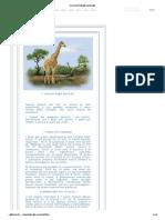 I record degli animali.pdf