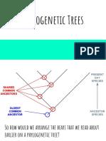 01 phylogenetic trees