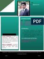 Hand Made CV