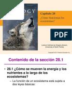 28 Audesirk capítulo 28.pdf
