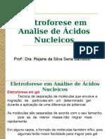 Eletroforese Agarose e Poliacrilamida