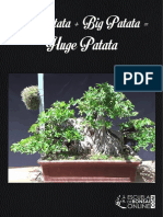 Huge Patata eBook