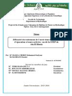 Ms.Hyd.Hamza-Cherif+Ramdani.PDF.