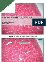 Técnicas Histológicas Technic Histology