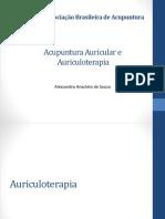 314364352-Acupuntura-Auricular-Francesa.pdf