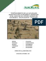 FORTALECIMJENTO D BOFEDALES.pdf