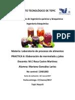 PRACTICA 5 Y 6 MERMELADA Y JALEA.pdf