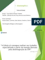 Bioenergética 2017