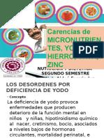 Carencias de Micronutrientes