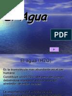 ELAGUA2002.ppt