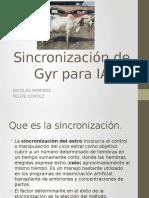 Repro Sincronizacion