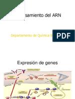 Procesamiento Del ARN Clase 1
