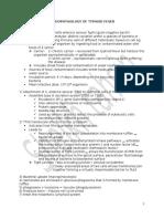 Typhoid Pathophysio