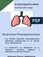Sx Pleuropulmonares