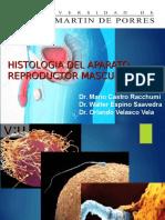 Usmp Practica 13 y 14 - Reproductor Masculino y Femenino