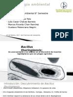 Bacillus Thuringiensis (2)
