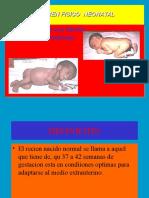 Examen Neonatal