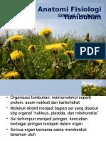 1. AT Sitologi tumbuhan.pptx