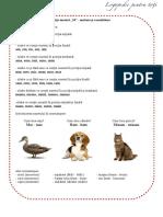 Fisa sunetul M - emitere si consolidare.pdf