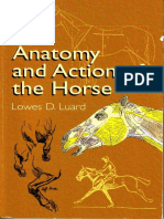 The_anatomy_and_action_of_the_horse.pdf