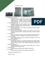 Analisis Radiograf Kasus  Berdasarkan 10 Clues