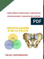 Huesos y Articulaciones Pelvis Expo