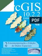 LivroArcGISEdicaoFotointerpretacao.pdf