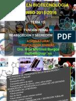 TEMA-13-FUNCION RENAL-III-2015-2016.pdf