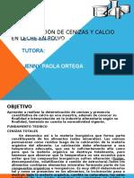 Aporte_practica 3 Quimica