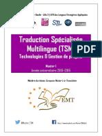 Traducere GUIDE M1-TSM 2015-2016