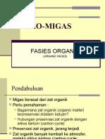 Geomigas 2 - Fasies Organik