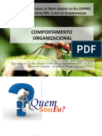 plano_ensino_comportamento_organizacional.pdf