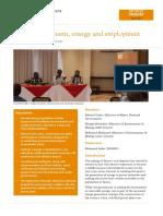 Coal Development, Energy and Employment - RVI Rift Valley Forum Meeting Report (2017)