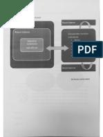 Scheme_ Managementul Riscului