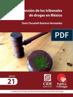 Ramirez_La Expansion de Los Tribunales de Drogas en Mexico