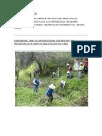 Modelo Informe Gestion Ambiental