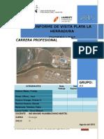 Informemorrosolarmodificadocoerrejido 151020225808 Lva1 App6892