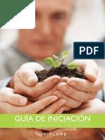 GUÍA DE INICIACIÓN2.pdf