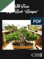 Mi Ficus Tiger Bark eBook