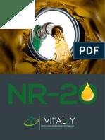 Nr 20 Combustíveis e líquidos inflamáveis