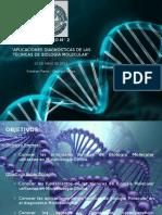 3.- Seminario n 2 Aplicaciones Diagnosticas de Las Tecnicas de Biologia Molecular - Copia