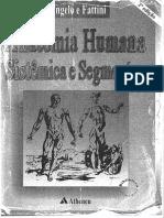 Anatomia Humana Sistemica e Segminecar