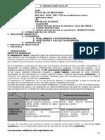 BIOQUIMICA METABOLISMO CELULAR.pdf