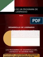 Desarrollo de Programa