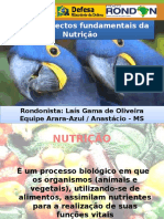 Aspectos Fundamentais Da Nutrição
